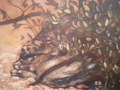 Shady Javelina Poster by Bonnie Behan