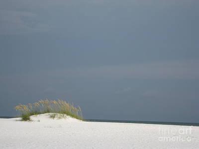 Shell Island Dune Poster by Jan Prewett