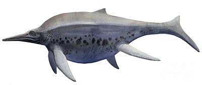 Shonisaurus, A Prehistoric Ichthyosaur Poster
