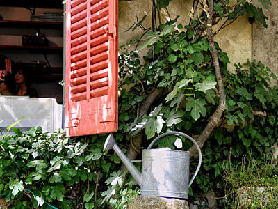 Shutters And Watering Can Poster by Sandra Anderson