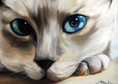 Siamese Cat Eyes Poster by Mary Sparrow