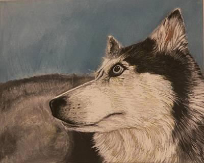 Siberian Husky Poster by Robert Decker