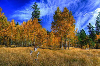 Sierra Nevada Fall Colors Lake Tahoe Poster by Scott McGuire