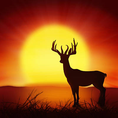 Silhouette Of Deer With Big Sun Poster