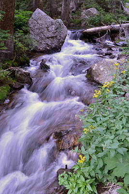 Poster featuring the photograph Silky Stream by Zawhaus Photography