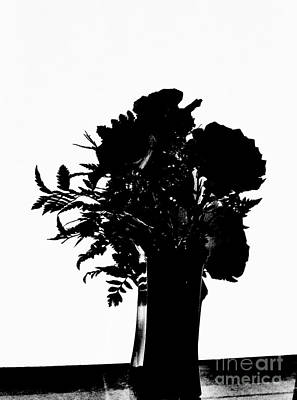 Sillouette Poster by Marsha Heiken