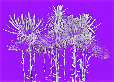 Silver Stems On Purple Poster by James Mancini Heath