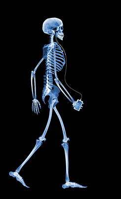 Skeleton With An Ipod Poster by D. Roberts