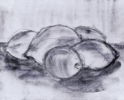 Sketch - Lemons And Limes Poster by Kamil Swiatek