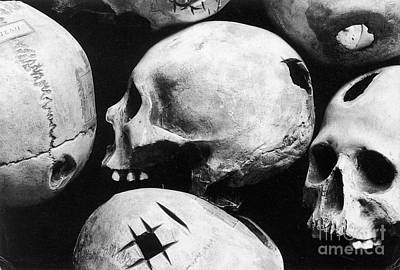 Skulls Showing Trepanation Poster by Science Source