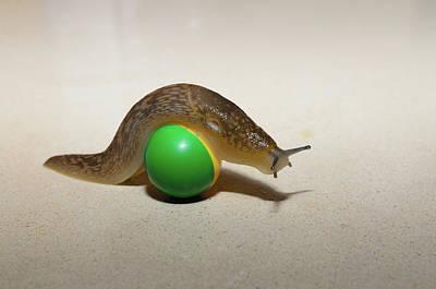 Slug On The Ball Poster