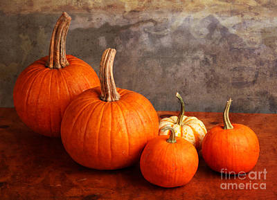 Poster featuring the photograph Small Decorative Pumpkins by Verena Matthew