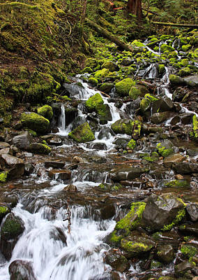 Small Waterfall Poster by Mark Alder