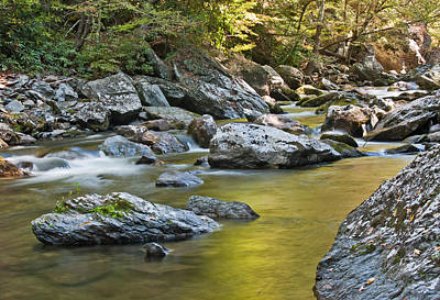 Smoky Mountain Streams II Poster