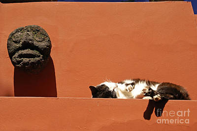 Snoozing Cat Mexico City Poster