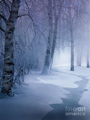 Snow Brook Poster by Robert Foster