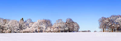 Snow Panoramic Landscape Poster