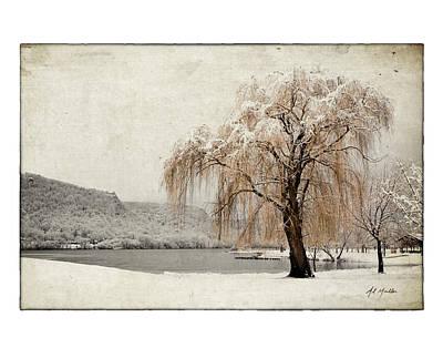 Snow Tree 1 Poster