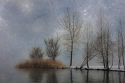 Snowfall Poster by Joana Kruse