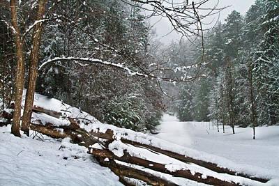 Snowy Fence Poster by Debra and Dave Vanderlaan