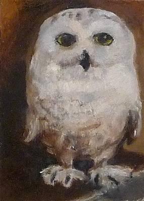 Snowy Owl Poster by Jessmyne Stephenson