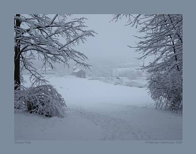 Poster featuring the photograph Snowy Path by Patricia Overmoyer