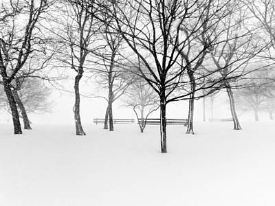Snowy Trees And Park Benches Poster