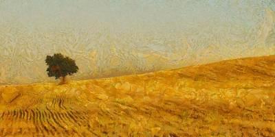 Solitude Is Golden Poster