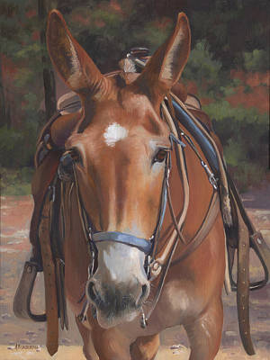 Sorrel Mule Poster