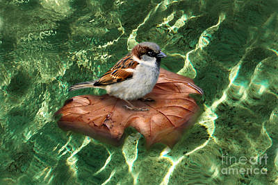 Poster featuring the digital art Sparrow On A Quest by Rosa Cobos