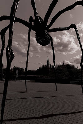 Poster featuring the photograph Spider by Josef Pittner