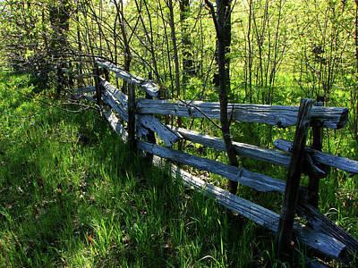 Split Rail Cedar Fence Poster