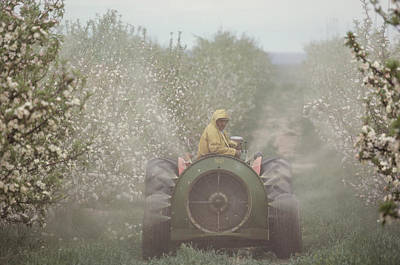 Spraying Apple Trees From A Machine Poster by Sisse Brimberg
