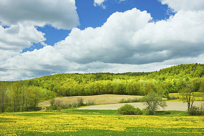 Spring Farm Landscape And Blue Sky In Maine Poster by Keith Webber Jr