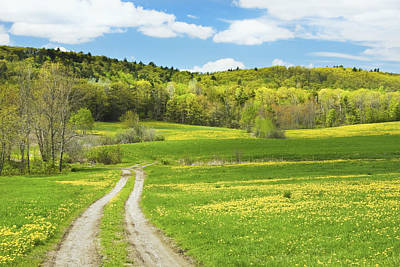 Spring Farm Landscape With Dirt Road In Maine Poster
