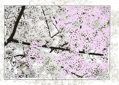 Spring Flowers Licensing Art Poster by Anahi DeCanio