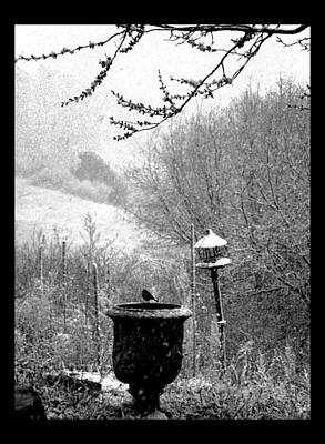 Poster featuring the photograph Spring Snowstorm 2012 by Susanne Still