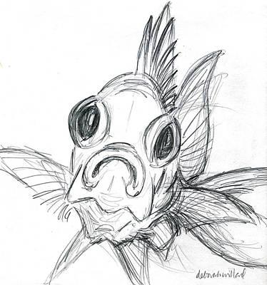 Squirrelfish Drawing Poster by Deborah Willard