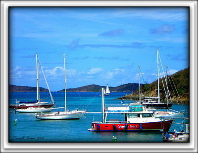Poster featuring the photograph St-thomas Virgin Islands by Danielle  Parent