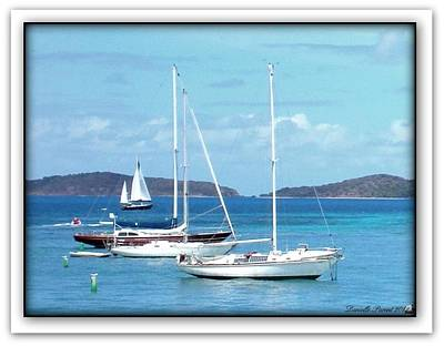 Poster featuring the photograph St-thomas Virgin Islands Trio by Danielle  Parent