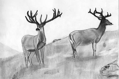 Stag Poster by Shashi Kumar