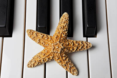 Starfish Piano Poster by Garry Gay