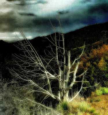 Storm Over The Jemez Mountains Poster by Ellen Heaverlo