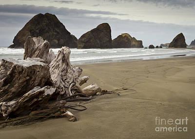 Stormy Oregon Coast Poster by Jim Adams