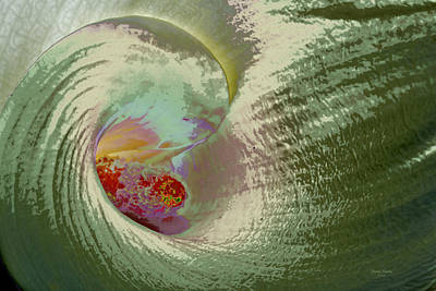 Stylized Calla Lily Poster by Phyllis Denton