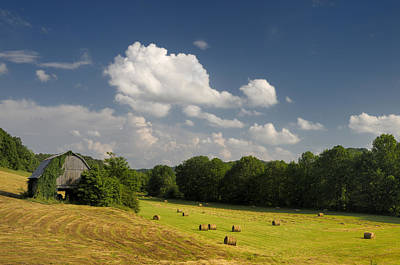 Summertime Down On The Farm. Photo By Darrell Young. Poster