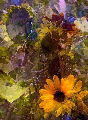 Sunflower 12 Poster by Pamela Cooper