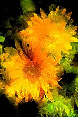 Sunflower 2 Poster by Pamela Cooper
