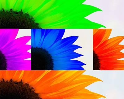 Sunflower Interrupted Poster