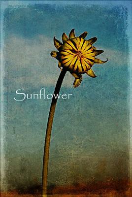 Sunflower Text Poster